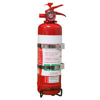 Safety Ace Fire Extinguisher