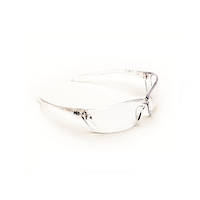 ProChoice Safety Glasses Richter Clear